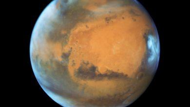 Photo of Der Mars schwitzt