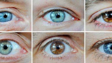 Photo of 50 Gene für Augenfarbe entdeckt