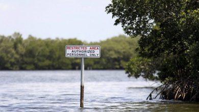 Photo of Drohende Umweltkatastrophe in Florida zunächst gebannt